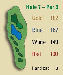 Hole 7